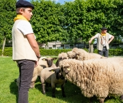 2019-05-25-Lancement-Belle-Bergere03